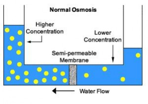 water treatment process water treatment waste water treatment  : osmosis diagram - findchart.co