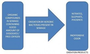 SEWAGE-AEROBIC OXIDATION