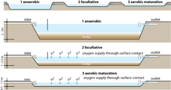 types of ponds | Water Treatment | Waste Water Treatment